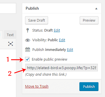 Public Post Preview plugin