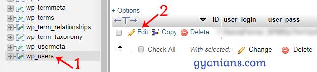 edit wp_user table in phpmyadmin