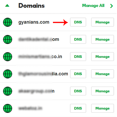 Open Domain DNS settings