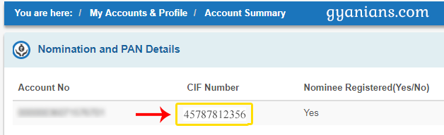 find sbi cif number using internet banking step 2